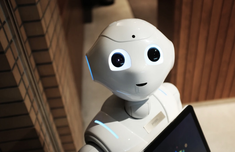 What Are The Users of Artificial Intelligence